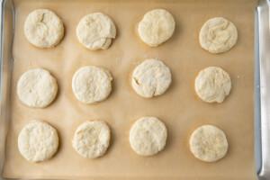 Vegan biscuit dough discs on a parchment-paper lined sheet pan